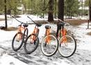 Bikes-Pioneer 7