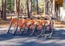Bikes-Woodland 1