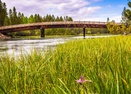 Sunriver-Bridge over the Deschutes-Woodland 1