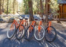Bikes-Timber 3