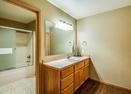 Downstairs Full Bath-Red Cedar 49