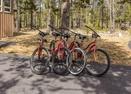 Bikes-Kinglet 42