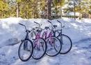 Bikes-Todd Lane 11